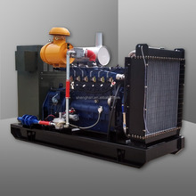 Biogas/natural gas generator 100kw for alternative energy project