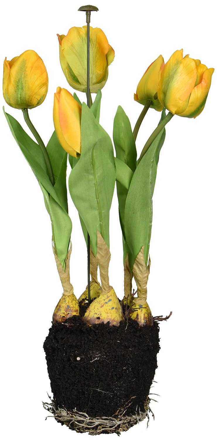 Buy Allstate Floral Lha411 Gr Tulip Arrangement With 5 Tulip Blooms
