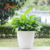Factory wholesale cheap garden round shape small the lazy self watering plastic flower pot