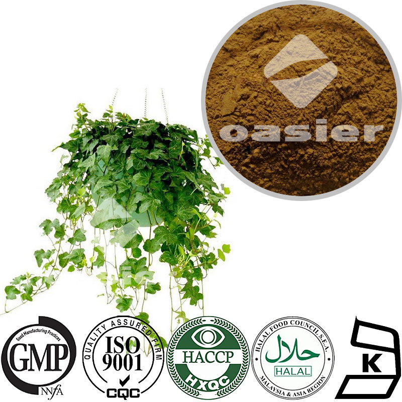 High Quality 5%-10%Hedera coside C Herbal Extract Hedera helix Extract Powder