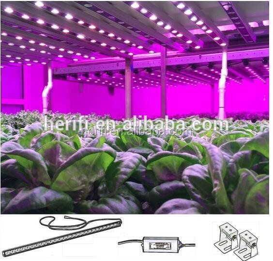 1200mm 520w LA003 Bar fixture lights for greenhouse plants Full spectrum LED grow lights