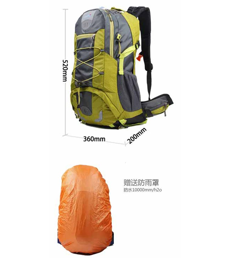 New Design Cool Camel Active Sport Leisure Backpack