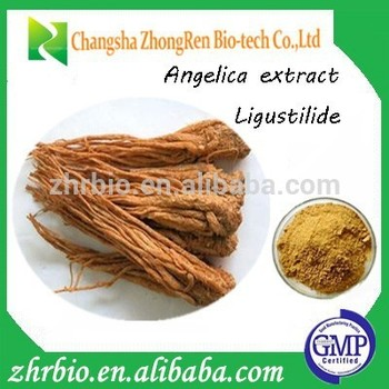 Chinese Angelica Extrat/ Dong-quai/ Angelica Root Extract/ Extract ...