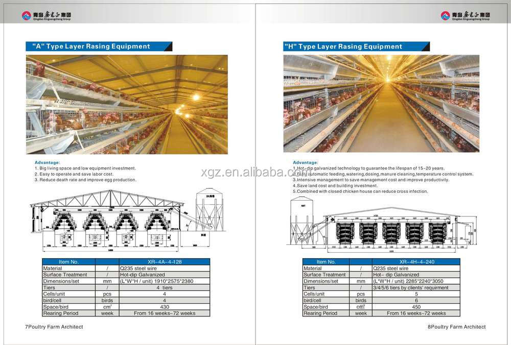 best selling automatic poultry shed construction sale in south america