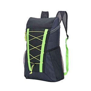 Antique Waterproof Travel Light Foldable Scooter Backpack Shenzhen For School