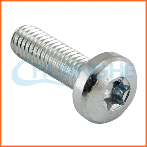 China Supplier Torx Flat Head Screw M6