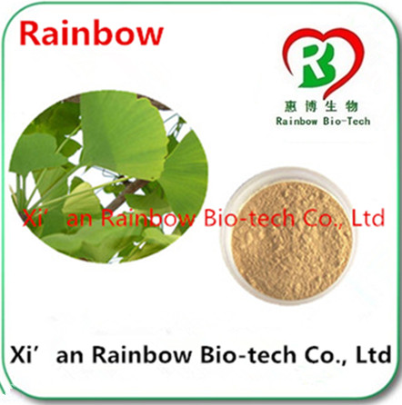 raw materials supply Brand new competitive price ginkgo biloba extract