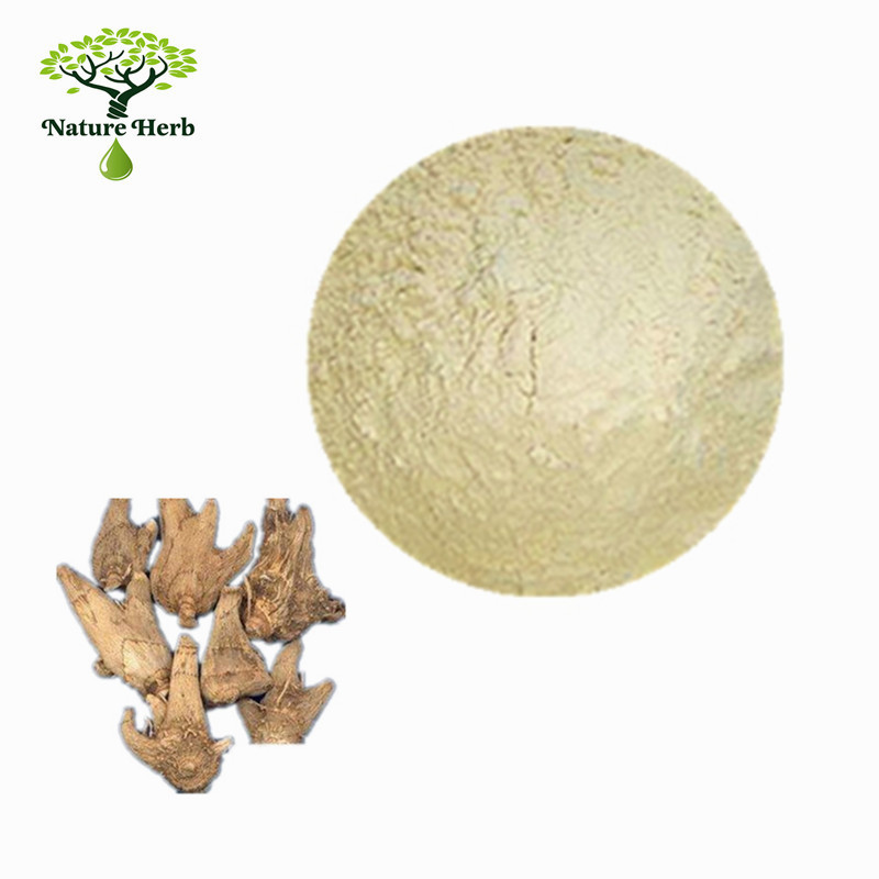 Hot sale High Purity Powder Kava Extract 70% Kavalactones