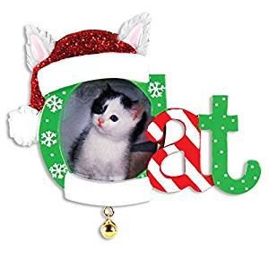 buy personalized christmas ornaments picture frame christmas cat frame in cheap price on malibabacom