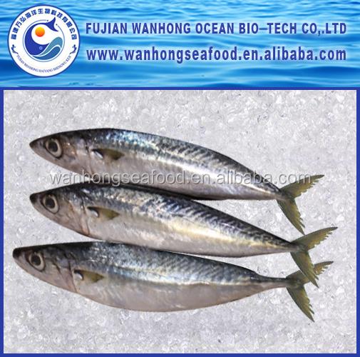 congel s seagood frais congel s anchois poisson congel poissons id de produit 60535352684. Black Bedroom Furniture Sets. Home Design Ideas
