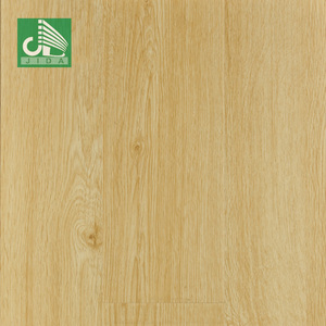 Traditional Living Water Resistant German Wooden Laminate Flooring 12mm