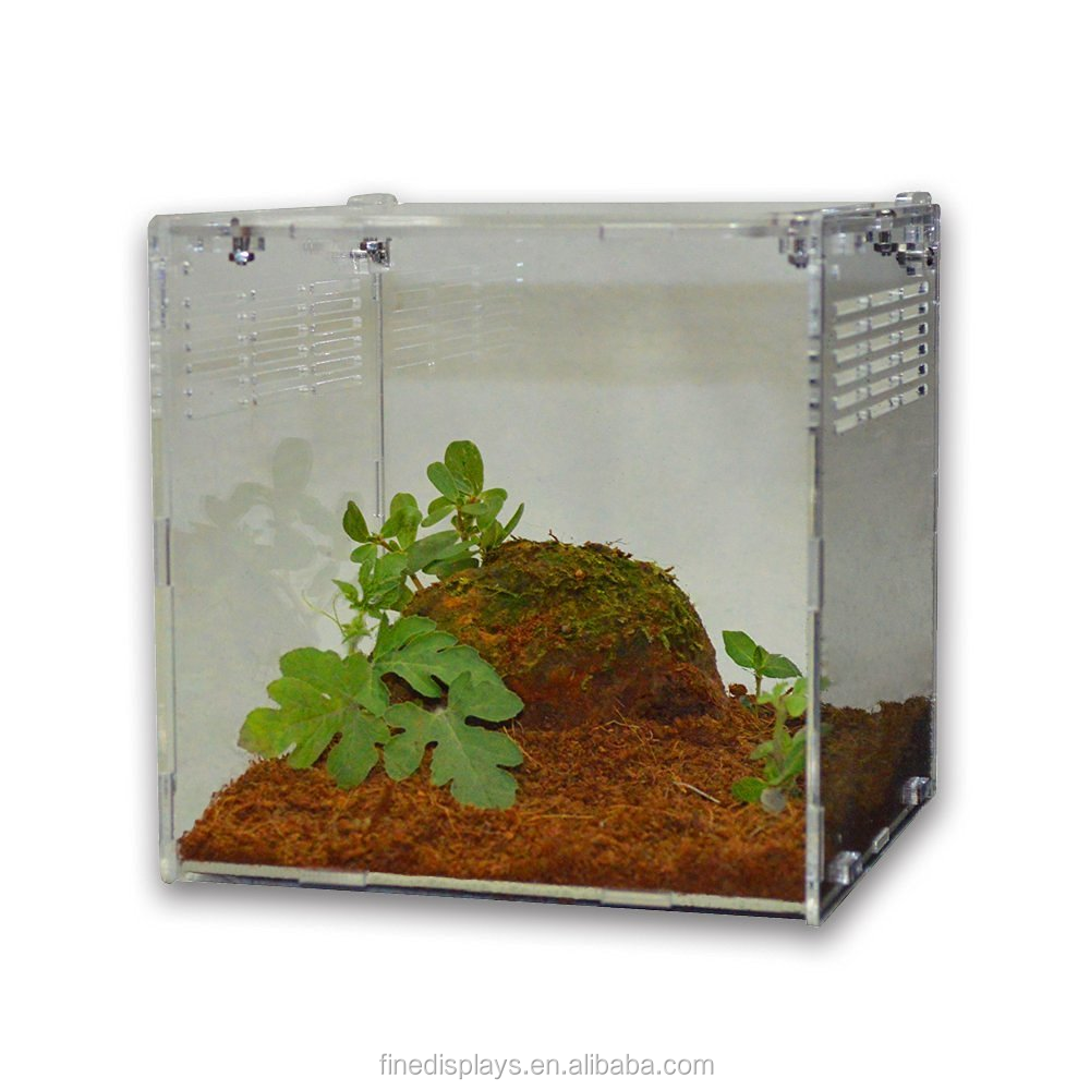 Acrylic Reptile Terrarium Habitat for juvenile and small arboreal tarantulas chameleon snails or other Larval Reptiles