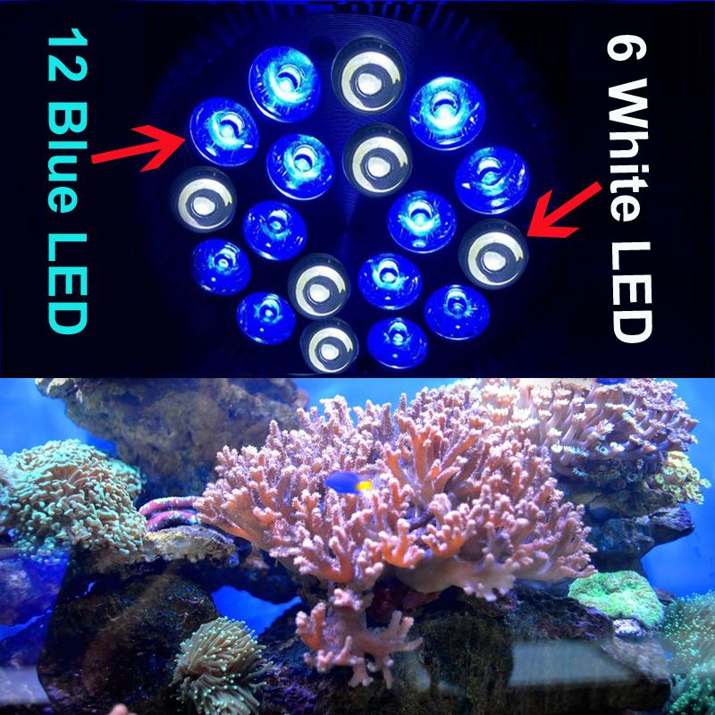 Aquarium T5 Light Bulb Lamp Reef Marine Actinic Blue Fish: RAYWAY E27 Pa38 12blue 6white LED Aquarium Light Bulb