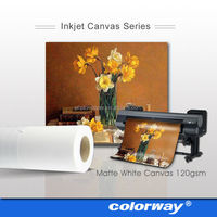 220G High Glossy Inkjet Canvas& Canvas Paper