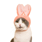 Cute Soft Comfortable Easy to Use Japanese Design Animal Rabbit Dog Cat Pet Hat