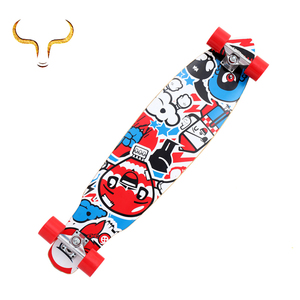Custom complete Canadian maple skateboard wood mini long board with heat transfer printing