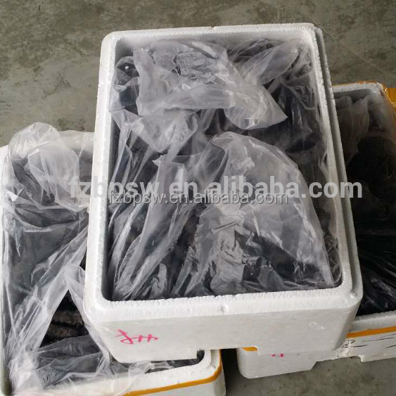 Wholesale price dried sea cucumber buyers in China
