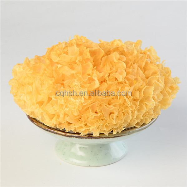 Tremella Mushroom For Sale Best Price