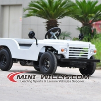 Hot new products for 2015 Lots of fun mini 110cc willys