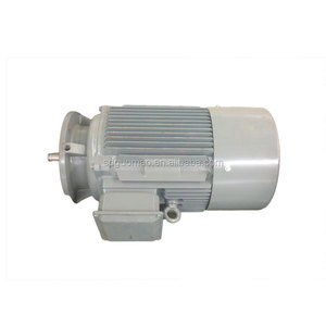 Slow speed motor with Hollow shaft