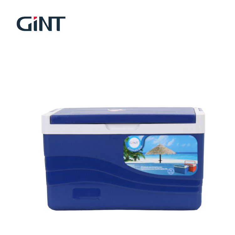 Hot selling insulated mini disposable small 5l cooler box ice chest coolers