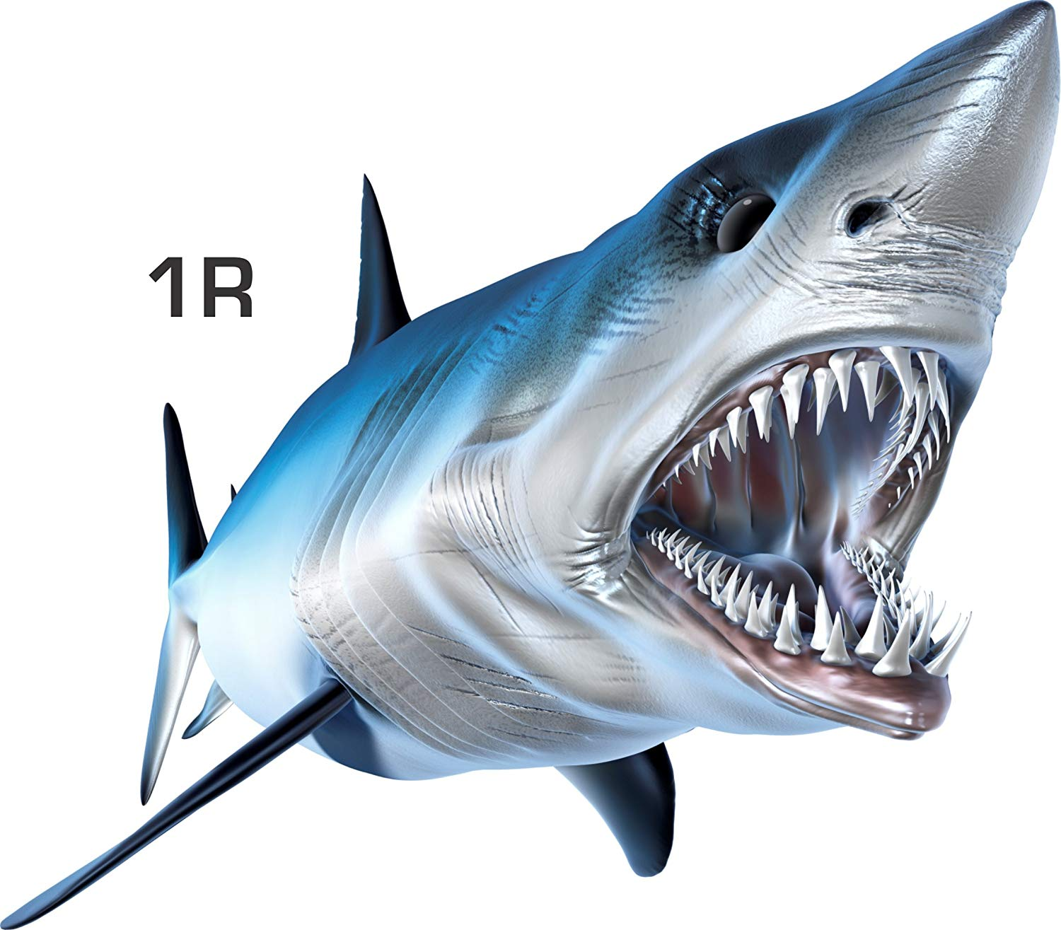 Etc Mako Shark Beautiful Fish Decal for Your Boat Many Sizes and Styles Available 12 to 40 Vehicle