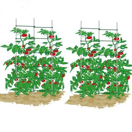 Mr.Garden Expandable Trellis,Plant Ladder,Support Ladder,Tomato Trellis,Cucumber Trellis, 5Ft High, 2 Sets