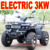 3000W ATV Electric 48V ATV