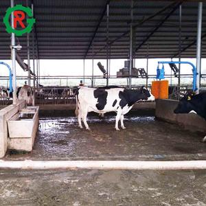 Cow Brush Machine, Cow Brush Machine Suppliers and