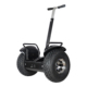 2018 Popular police use 19 inch fat tire electric chariot covered