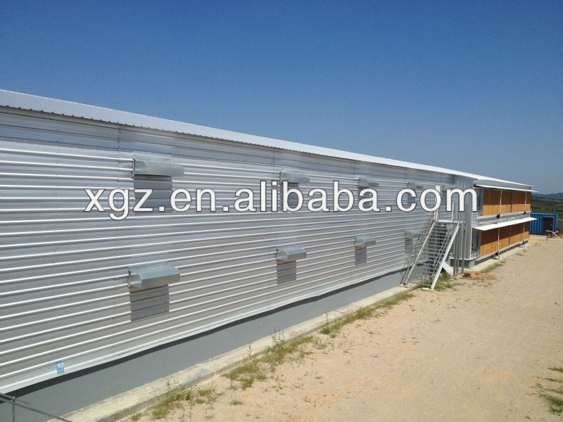 Automatic poultry feeding system Professional design chicken egg poultry farm