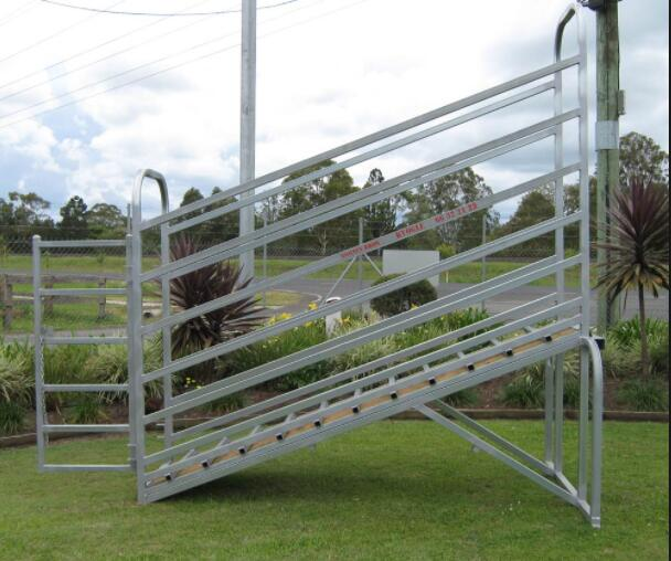 Adjustable cattle loading ramp without man-walkway