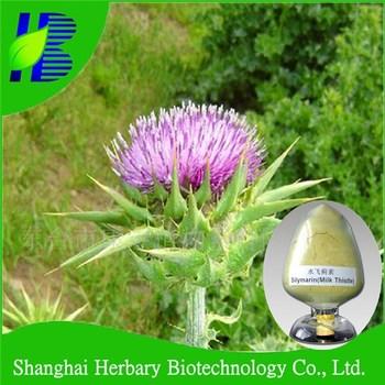 2017 Natural liver tonic milk thistle extract silymarin uv80%