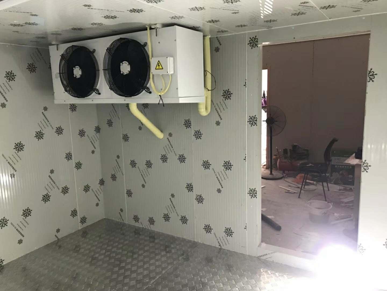 Vriezer/koel deuren/koude kamer deur