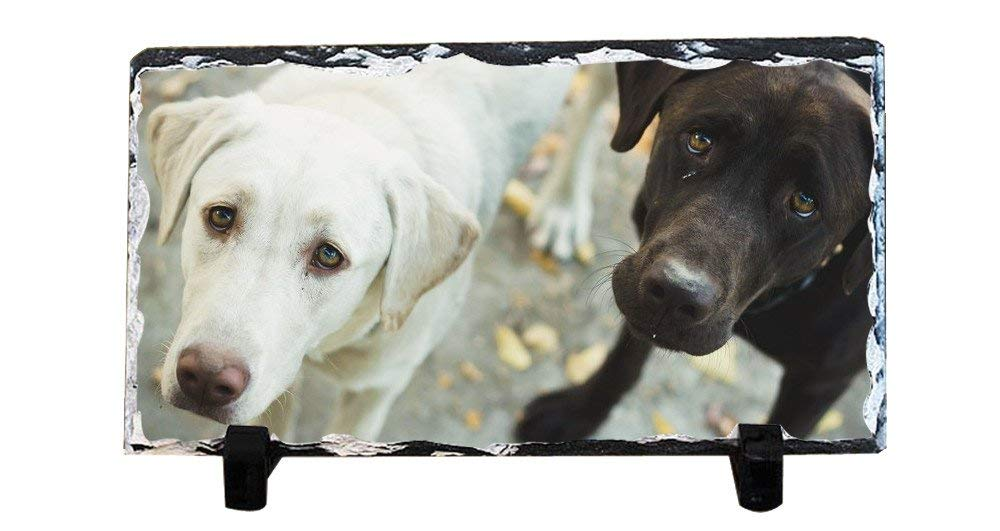 DKLZY Personalized Gifts Dog slate plaque are custom personalized to create a unique decoration suitable for any home