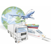 Professional international freight forwarder for air sea freight