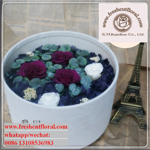 Exotic Wholesale Preserved Flowers From Kunming For Flowers ...