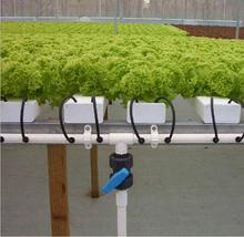 nft hydroponic agriculture greenhouse