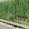 High quality factory price highway guardrail cost per foot road safety product anti crash guardrail high security fence
