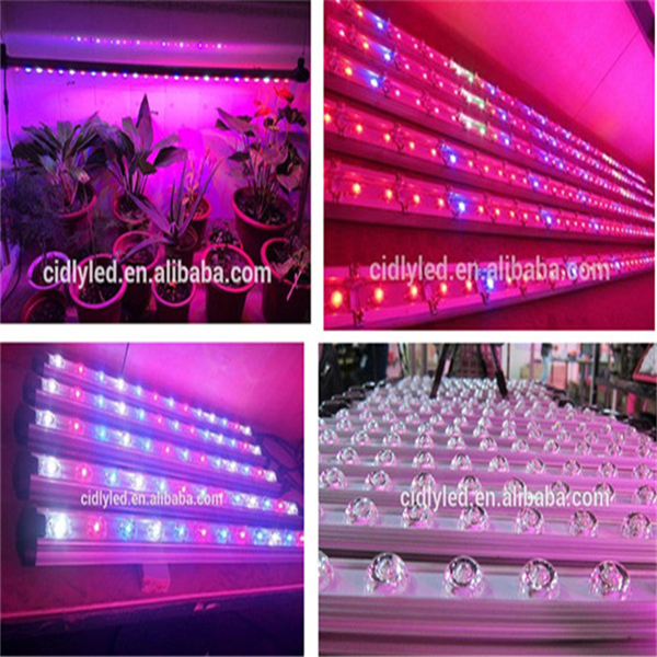 aeroponic tower garden system 660nm 460nm Cidly led grow strip light full spectrum suited to all stages of the plants life