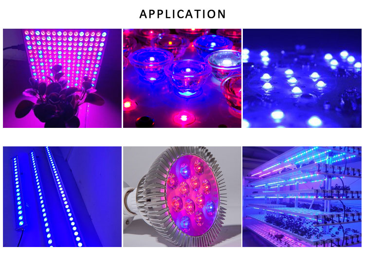 LED Grow Light 440NM 450NM Royal Blue 1 w 3 w LED Diode