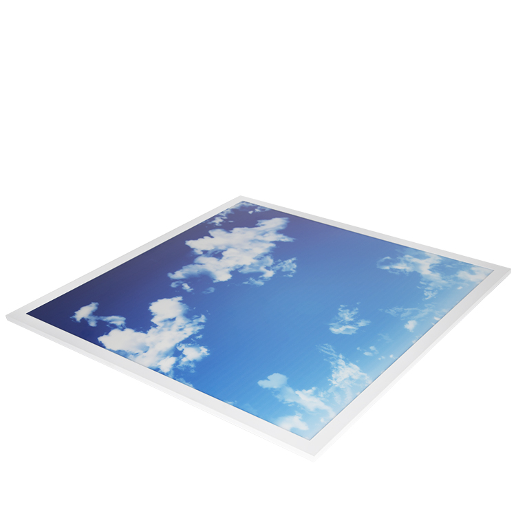 Customize Image Sky Ceiling 600x600 Led Panel Light For Home Indoor Office Lighting Ultra Slim 2*2 2*4  Frameless Project Wall