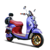800w high power motor most ECO electric bike made in China for import (ML-JGW)