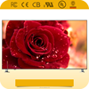 /product-detail/hot-sale-lcd-television-28-65-inch-with-wholesale-price-60442827807.html