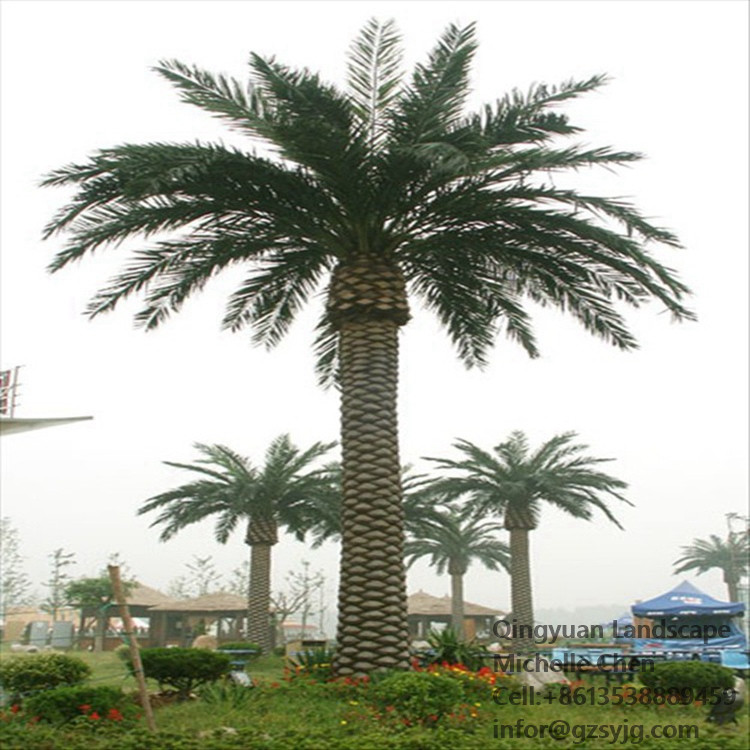Outdoor Palm Trees For Sale.Cheap Outdoor Tall Date Palm Tree Artificial Plastic Date Palm Artificial Palm Trees Buy Artificial Palm Trees Artificial Palm Tree Artificial