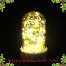 Decorative glass dome with butterfly and led light for table decoration