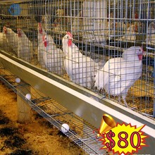 Alibaba online shopping 200 chicken cages price for christmas