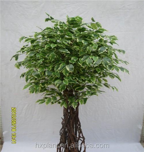 Artificiale di plastica finto microcarpa ficus bonsai for Vasi bonsai plastica
