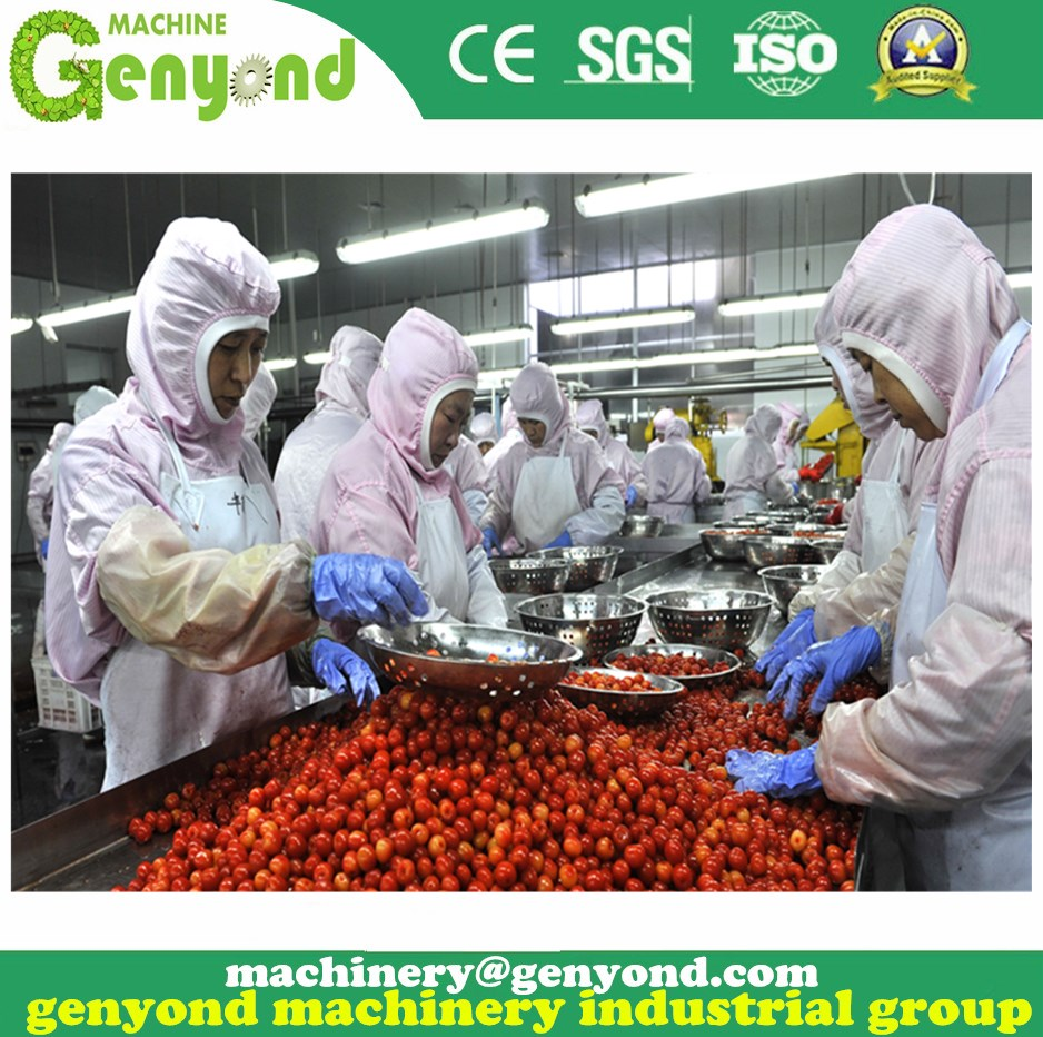 Small capacity canned fruit production process line