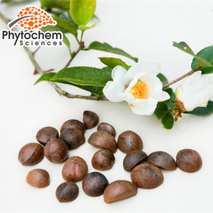 Light Yellow Powder form Oil-tea camellia seed